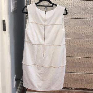 The Limited size 10 dress